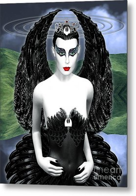 My Black Swan Metal Print by Keith Dillon