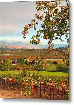 My Favorite Valley View - Autumn In Southern Oregon Metal Print