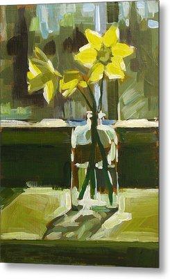 My First Daffodils Metal Print by Annie Salness
