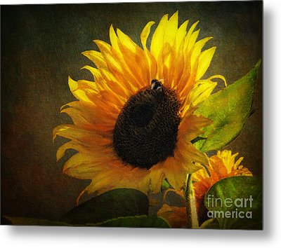 Metal Print featuring the digital art ...my Only Sunshine by Lianne Schneider