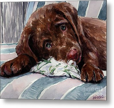 My Rope Toy Metal Print by Molly Poole