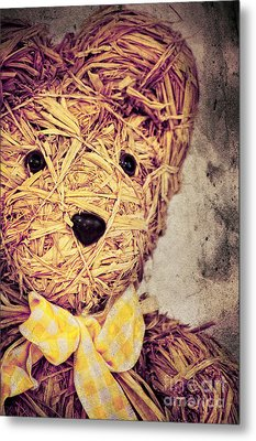 My Teddy Bear Metal Print by Angela Doelling AD DESIGN Photo and PhotoArt