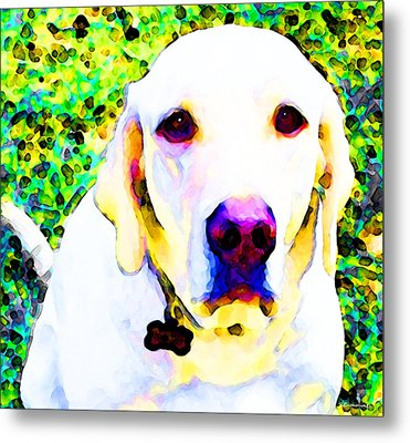 My World Dog Art By Sharon Cummings Metal Print by William Patrick