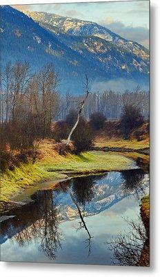 Myrtle Creek Reflections Metal Print by Annie Pflueger
