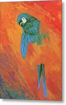 Metal Print featuring the painting Mysterious Macaw by Margaret Saheed