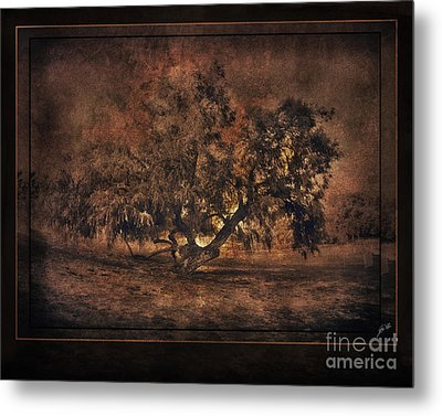 Mysterious Mesquite Metal Print