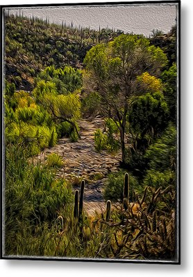 Mystic Wandering Metal Print by Mark Myhaver