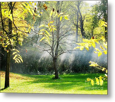 Metal Print featuring the photograph Mystical Parkland by Nina Silver