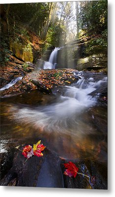 Mystical Pool Metal Print by Debra and Dave Vanderlaan