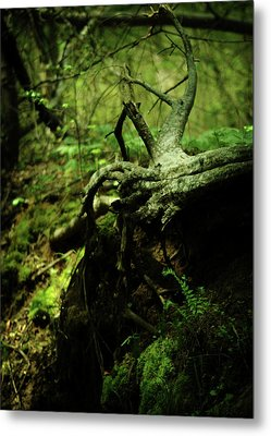 Naked Awakening Metal Print by Rebecca Sherman