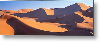 Namib Desert, Nambia, Africa Metal Print