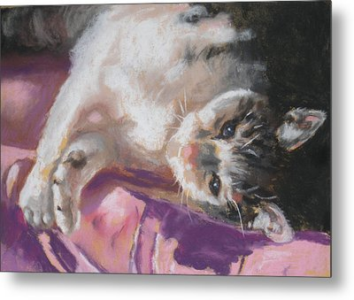 Nap Time For Kitty Metal Print by Janice Harris