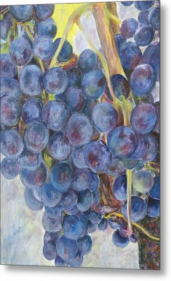 Napa Grapes 1 Metal Print