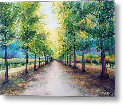 Napa Road Metal Print