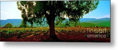 Napa Valley Ingenook Winery Roadside Metal Print