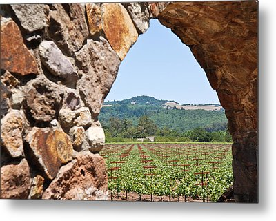 Metal Print featuring the photograph Napa Vineyard by Shane Kelly
