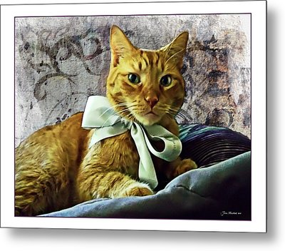 Napoleon And The Ribbon Metal Print by Joan  Minchak