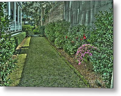 Narrow Urban Garden Metal Print