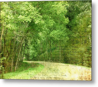 Natchez Trace Metal Print by Terry Eve Tanner