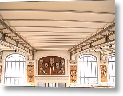 National Museum Of Natural History - Paris France - 011320 Metal Print by DC Photographer