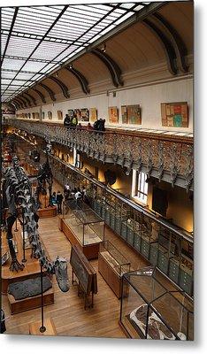 National Museum Of Natural History - Paris France - 011327 Metal Print