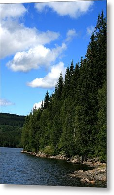 National Park Metal Print
