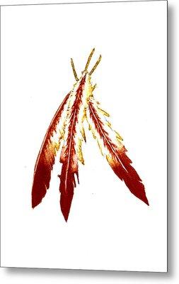 Native American Feathers  Metal Print