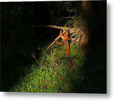 Metal Print featuring the photograph Natural Bands 2 by Evelyn Tambour