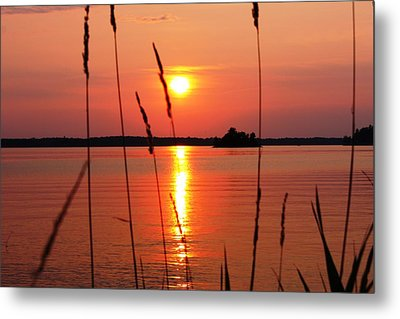 Natural Beauty Metal Print by Pat Purdy