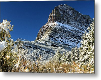 Natural Picture Frame Metal Print by Adam Jewell