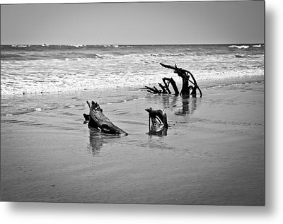 Metal Print featuring the photograph Natural Sculpture by Lana Enderle