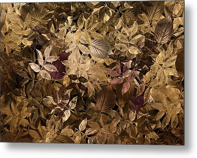 Naturaleaves - Gla02f Metal Print by Variance Collections