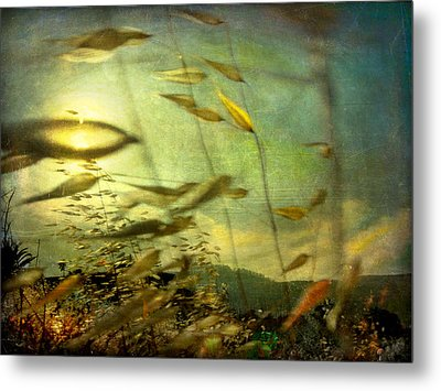Metal Print featuring the photograph Nature #12. Strong Wind by Alfredo Gonzalez