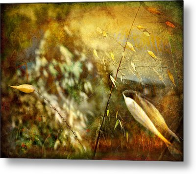 Metal Print featuring the photograph Nature #13. Calling You by Alfredo Gonzalez