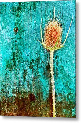 Metal Print featuring the digital art Nature Abstract 13 by Maria Huntley