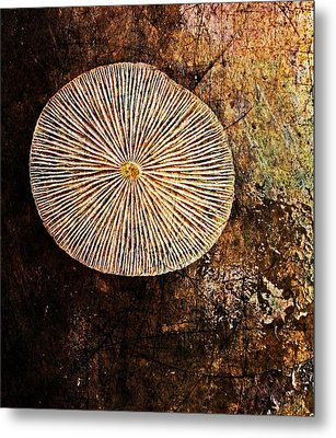 Metal Print featuring the digital art Nature Abstract 22 by Maria Huntley