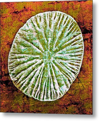 Metal Print featuring the digital art Nature Abstract 5 by Maria Huntley