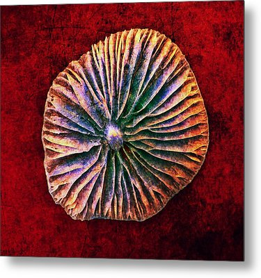 Metal Print featuring the digital art Nature Abstract 7 by Maria Huntley