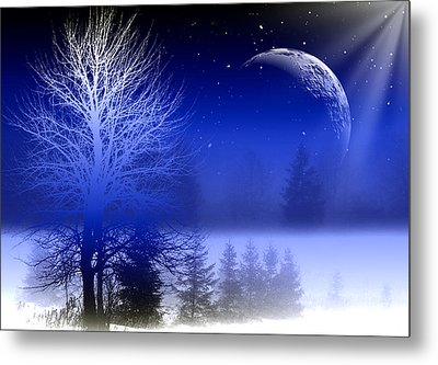Nature In Blue  Metal Print
