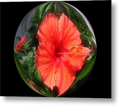 Nature Inside The Glass Ball Digital Art By Saribelle Rodriguez Metal Print by Saribelle Rodriguez