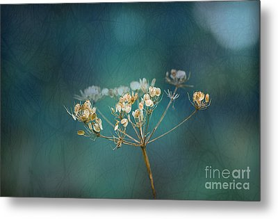 Nature Is Art Metal Print by Liz  Alderdice