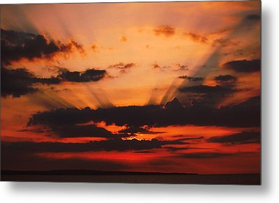 Nature Light Show Metal Print by Tony Reddington