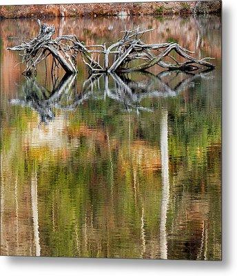 Nature Made Square Metal Print