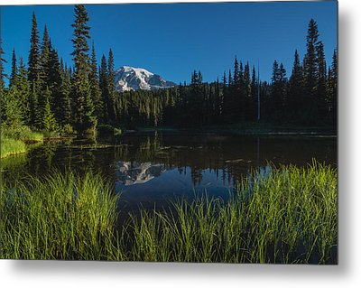 Nature Mirror Metal Print