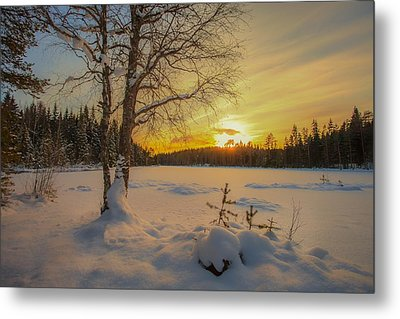 Nature Of Norway Metal Print