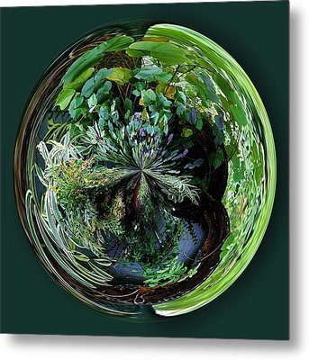 Nature Orb Metal Print by Paulette Thomas