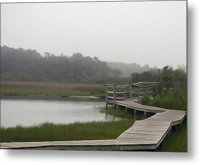 Metal Print featuring the photograph Nature Walk by Kelvin Booker