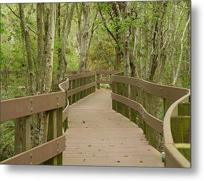 Metal Print featuring the photograph Nature Walk by Rosalie Scanlon