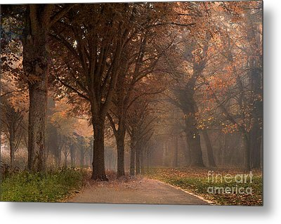 Nature Woodlands Autumn Fall Landscape Trees Metal Print by Kathy Fornal