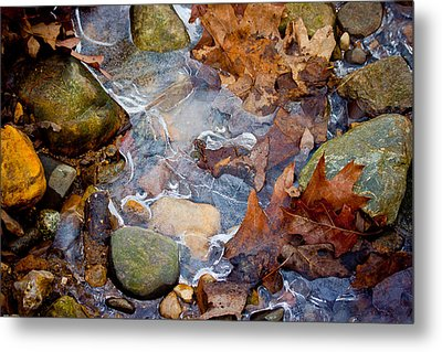 Nature's Abstract Metal Print